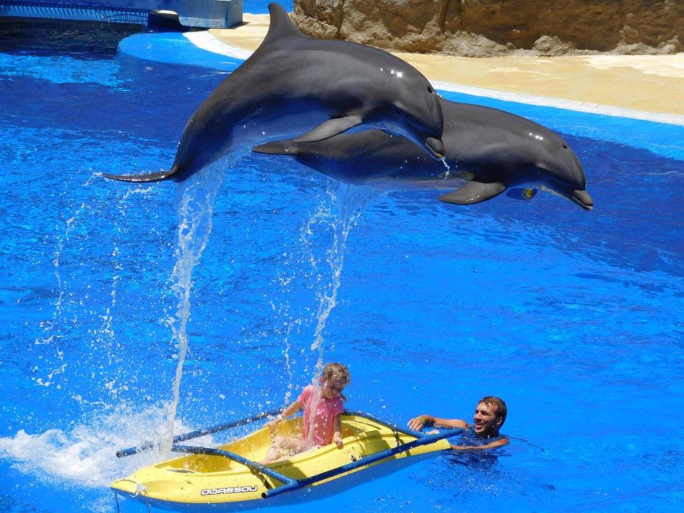 Le meilleur parc aquatique près de Sanary-sur-Mer