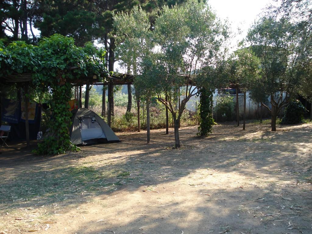 Location de mobile-home dans un camping 5 étoiles près de Sanary-sur-Mer
